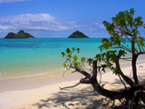 Lanikai Beach in Kailua, Hawaii is the top beach in the U.S., according to the 2014 TripAdvisor Travelers' Choice Awards for Beaches. (A TripAdvisor traveler photo)