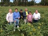 63226-project-junin-farmers-photo-sm