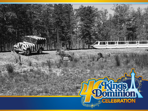 Lion Country Safari opened at Kings Dominion in 1974 along with a preview center for Kings Dominion's amusement park. The monorail shown above opened in 1975 with the rest of Kings Dominion.