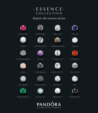PANDORA ESSENCE COLLECTION 24 charms and inner values