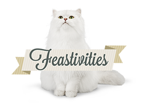 Feativities logo