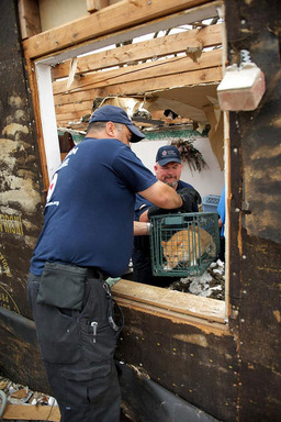 American Humane Association Red Star™ volunteer responders Manny Maciel and Jerry Means extract a cat from a tornado-damaged home in Oklahoma.