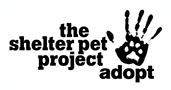 Shelter Pet logo