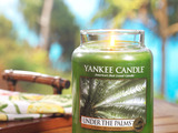 Yankee Candle's new Under the Palms™ fragrance features a lush green scent of sea grass, palm leaves and island coconut.