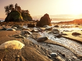 "Olympic National Park: Galyna Andrushko/Shutterstock (These images can only be used in context and conjunction with the promotion of the ""I Heart Parks"" guide and must include proper photo credit.)"