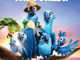 Discover the Forest - Rio2
