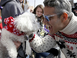 "Andy Cohen, host and executive producer of Bravo Media's ""Watch What Happens Live,"" greets a dog at the 21st annual Beggin'® Pet Parade Sunday, Feb. 23, 2014 in St. Louis."