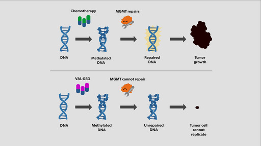 VAL-083, currently in clinical trials, damages tumor DNA in a way that cannot be repaired by the enzyme MGMT.