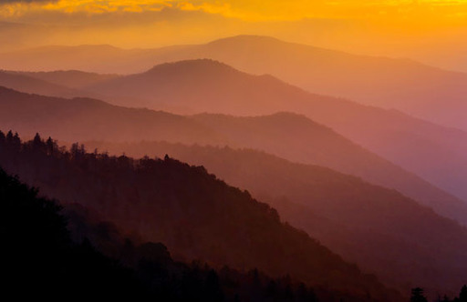 Great Smoky Mountains National Park, Manish Mamtani