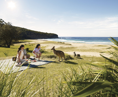 "New ""Someday"" Campaign from Virgin Australia, Delta Air Lines and Tourism Australia Offers 52 Aussie Someday Trips for Americans to Win."