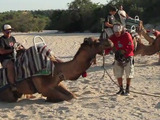 Explore the desert of Los Cabos from the back of a camel. Your family will never forget the fun of learning about one of Mexico's top vacation spots!