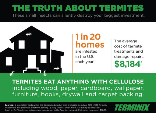 One in 20 homes are infested by termites each year