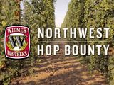 Widmer Brothers Visits a Pacific Northwest Hop Farm To Hand Select Hops For Fresh Hop Beer