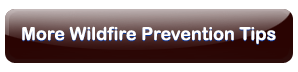 More Wildfire Prevention Tips
