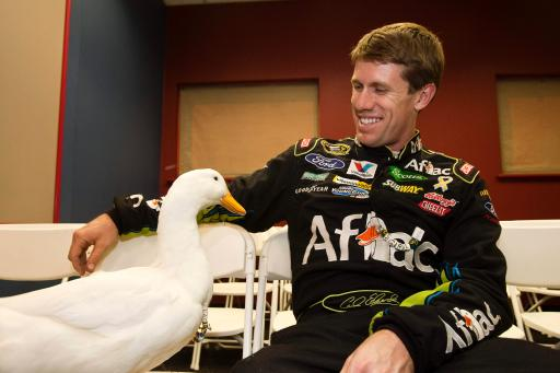 Carl and Aflac duck