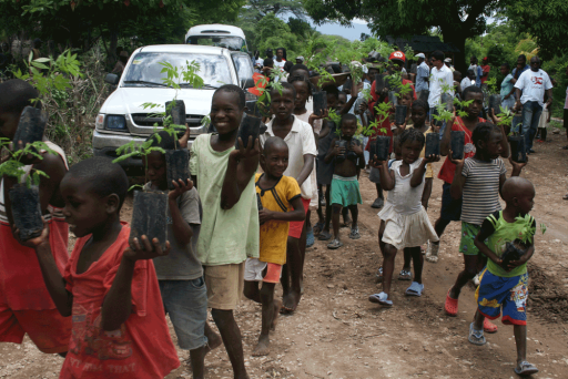 Haiti's little helpers