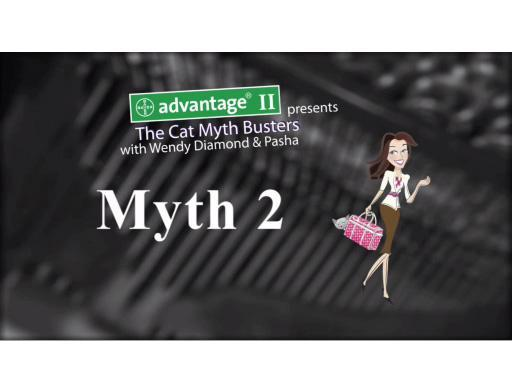 CatMythBusters.com - Myth 2 video