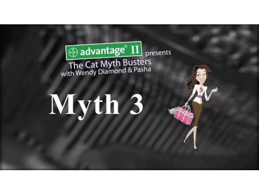 CatMythBusters.com &ndash; Myth 3 video