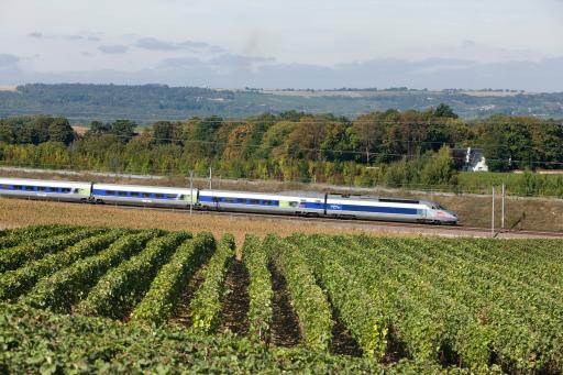 High speed train traveling through French vineyards © SNCF Médiathèque – Christophe Recoura