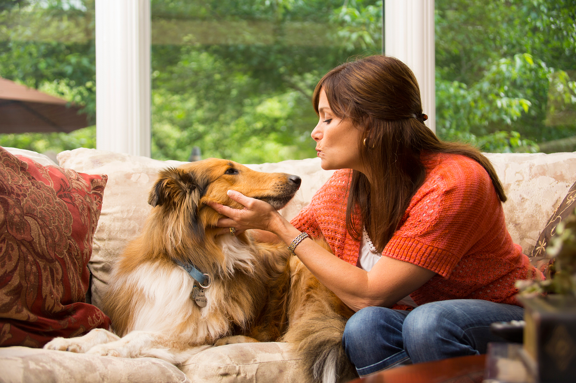 54 percent of dog owners aren't aware that physical changes in dogs can actually be related to cognitive issues.