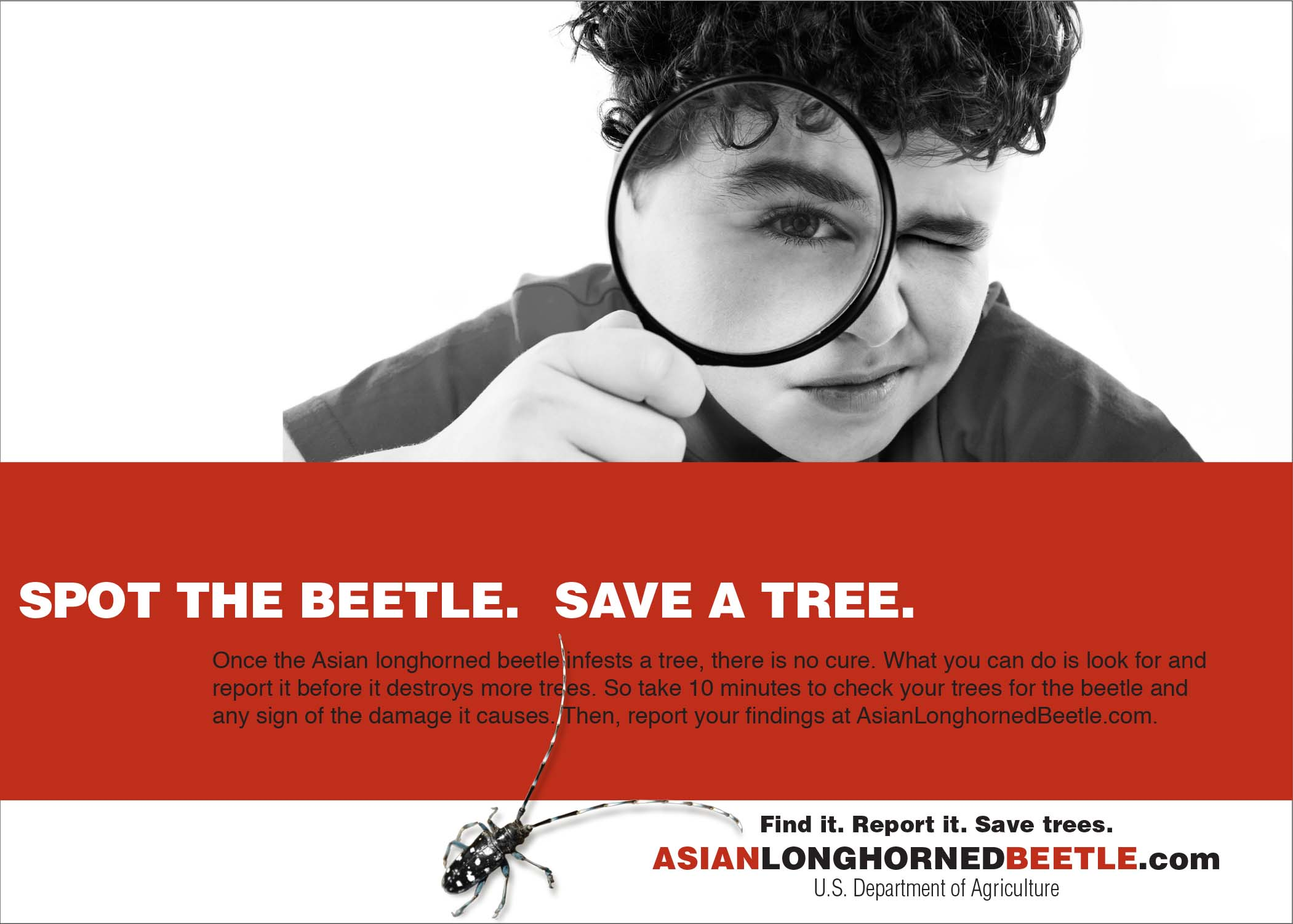 http://www.multivu.com/players/English/7277051-usda-august-tree-check-month-asian-longhorned-beetle-invasive-pest-psa/gallery/image/ecaa060b-9715-43e0-96ae-3a976e3dc74c.HR.jpg