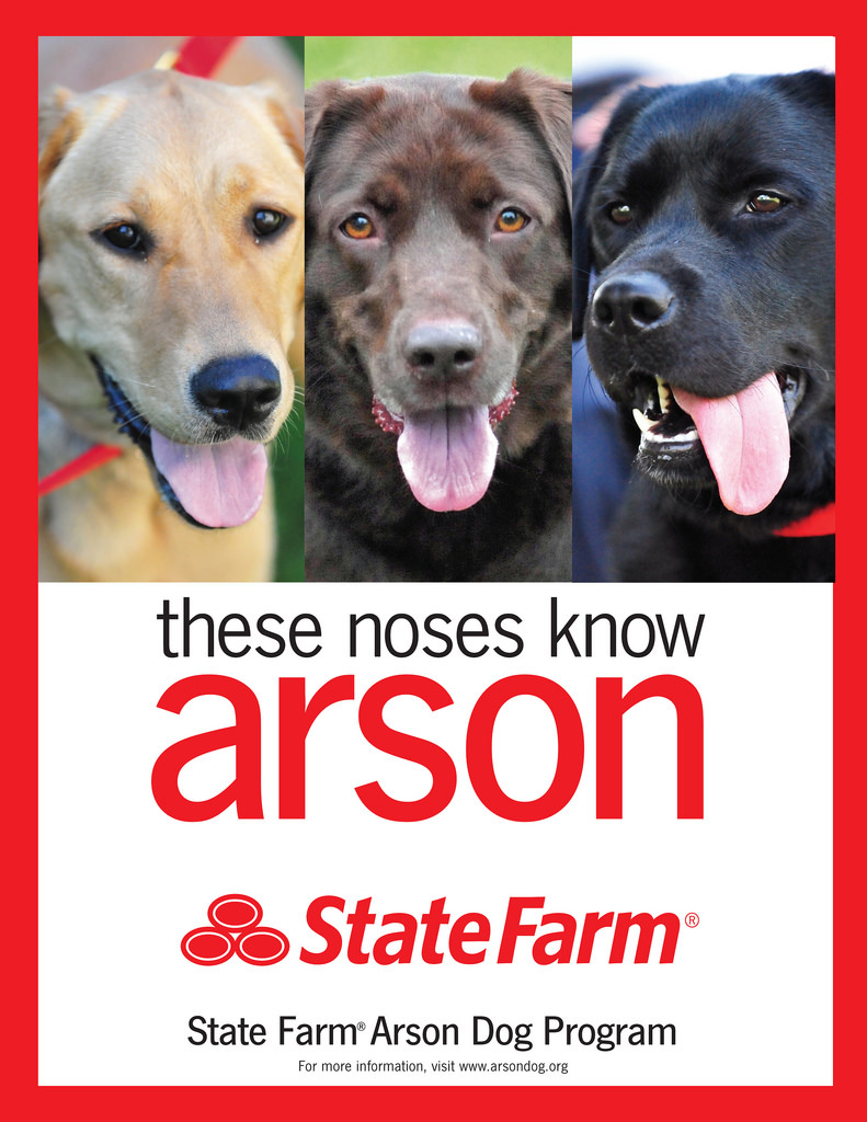 Since 1993, the State Farm Arson Dog Program has placed more than 360 arson dog teams across the U.S. and Canada. Arson dogs are one of the most important tools in a fire investigators' toolbox.