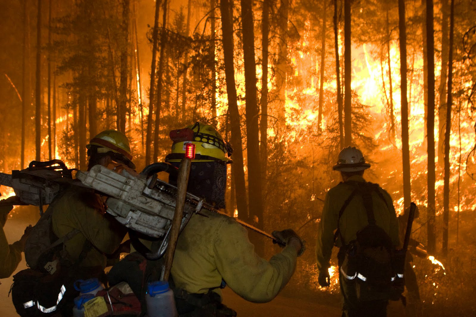 Wildland firefighters are tasked with combating wildfires and preventing future fires from starting. Arson places these brave men and women at risk.