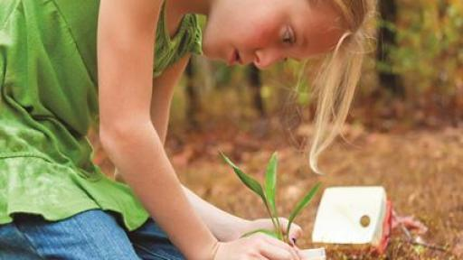 Evergreen Packaging Launches National Gardening Contest Promotes Sustainability Creativity In