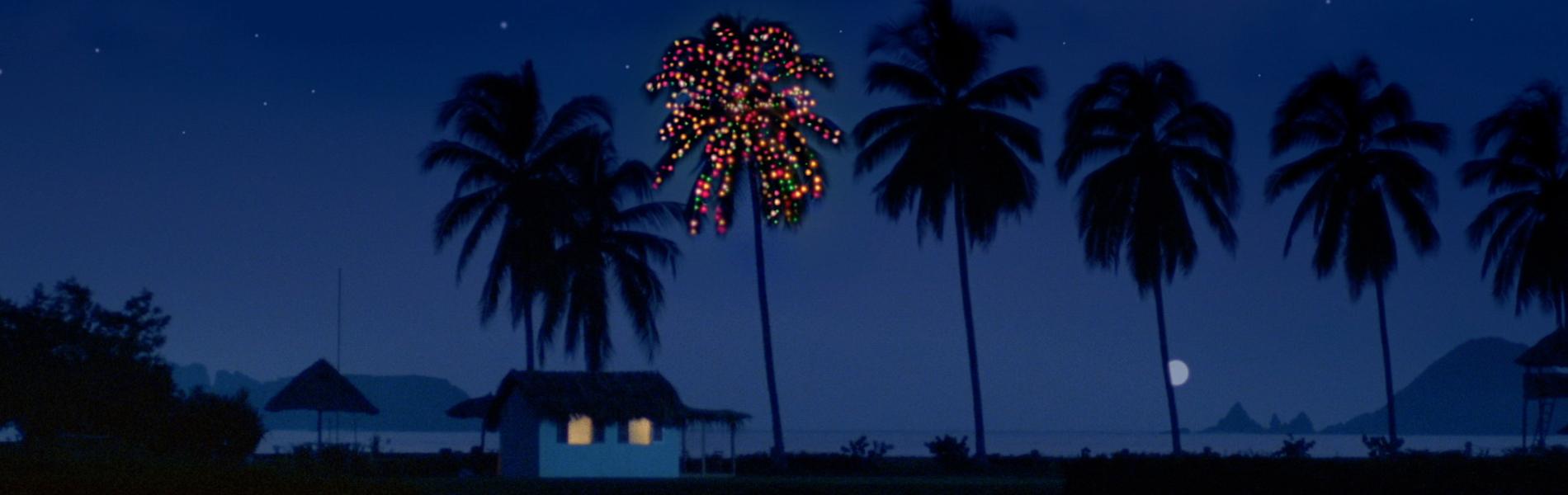 Christmas Trees Florida