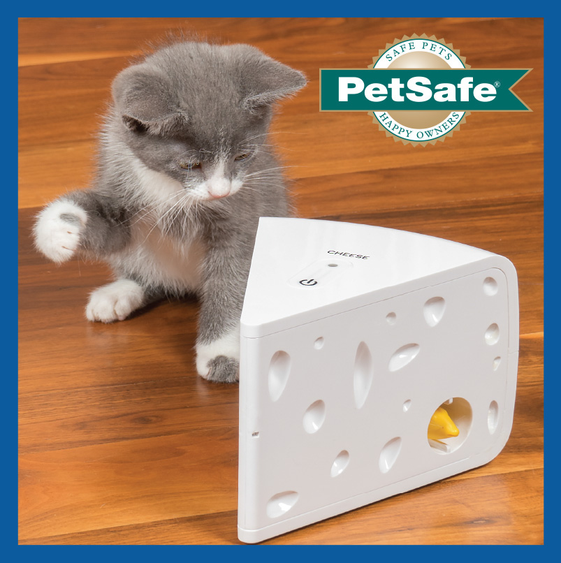 Your Cat Will Love This Peek-A-Boo Cheese Toy