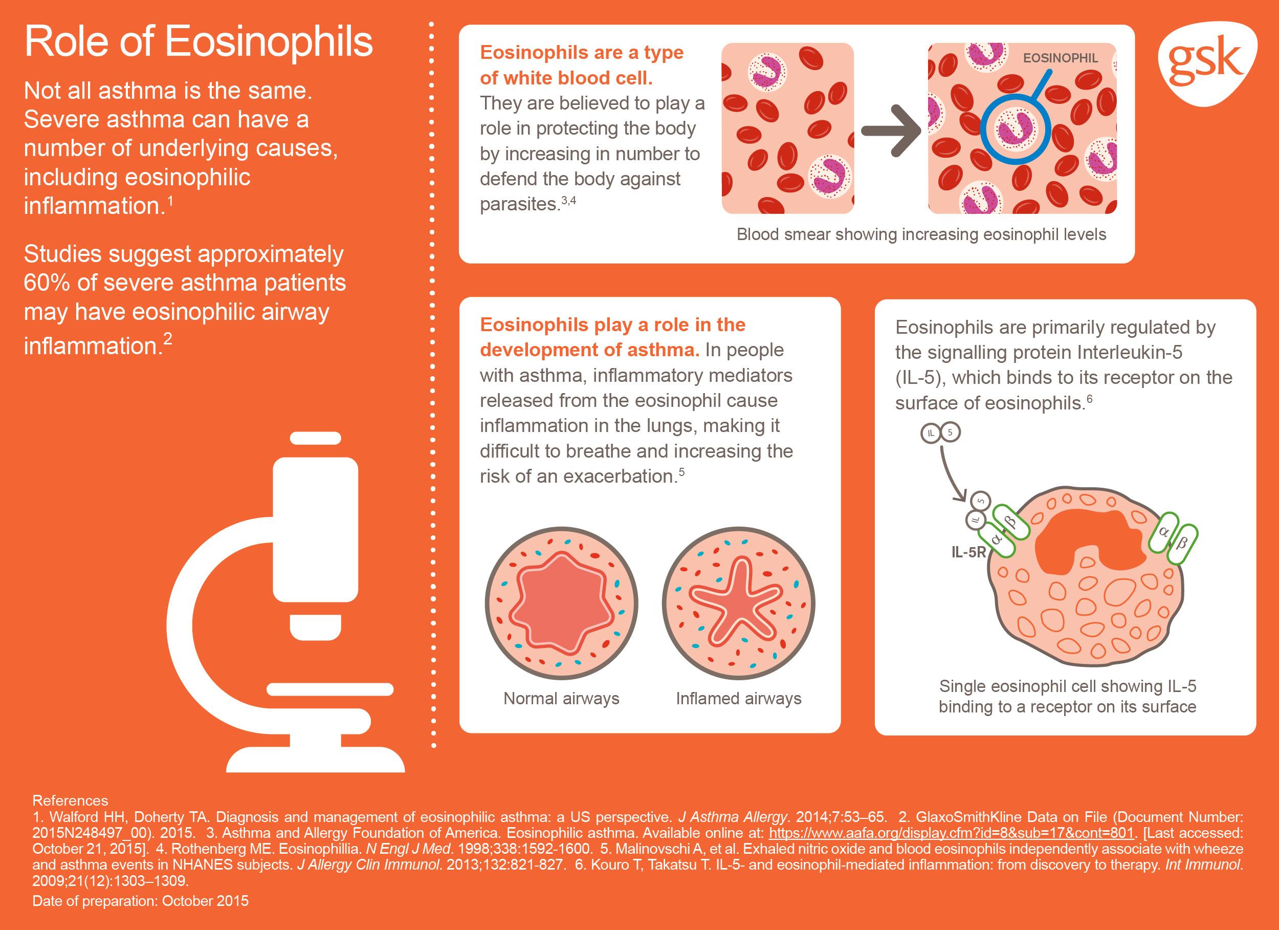 Eosinophil Infographic
