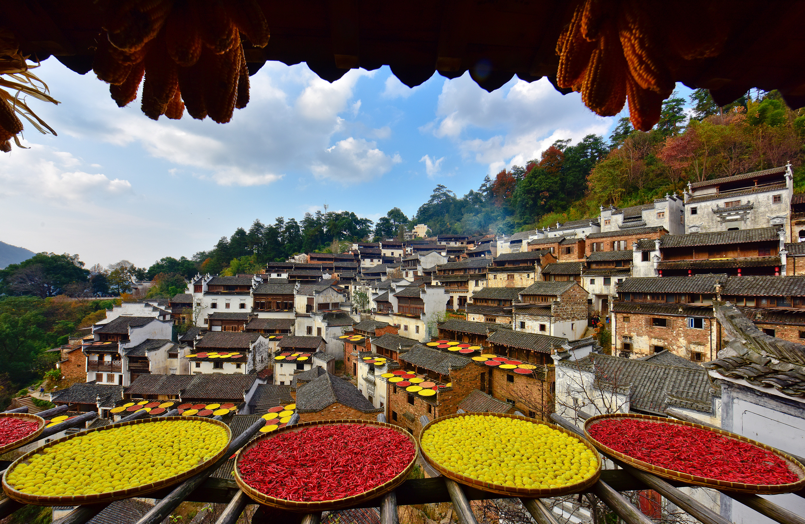 The unique view of shaiqiu can only be found in Huangling village where baskets of colorful harvest bask in the sunshine. (1)
