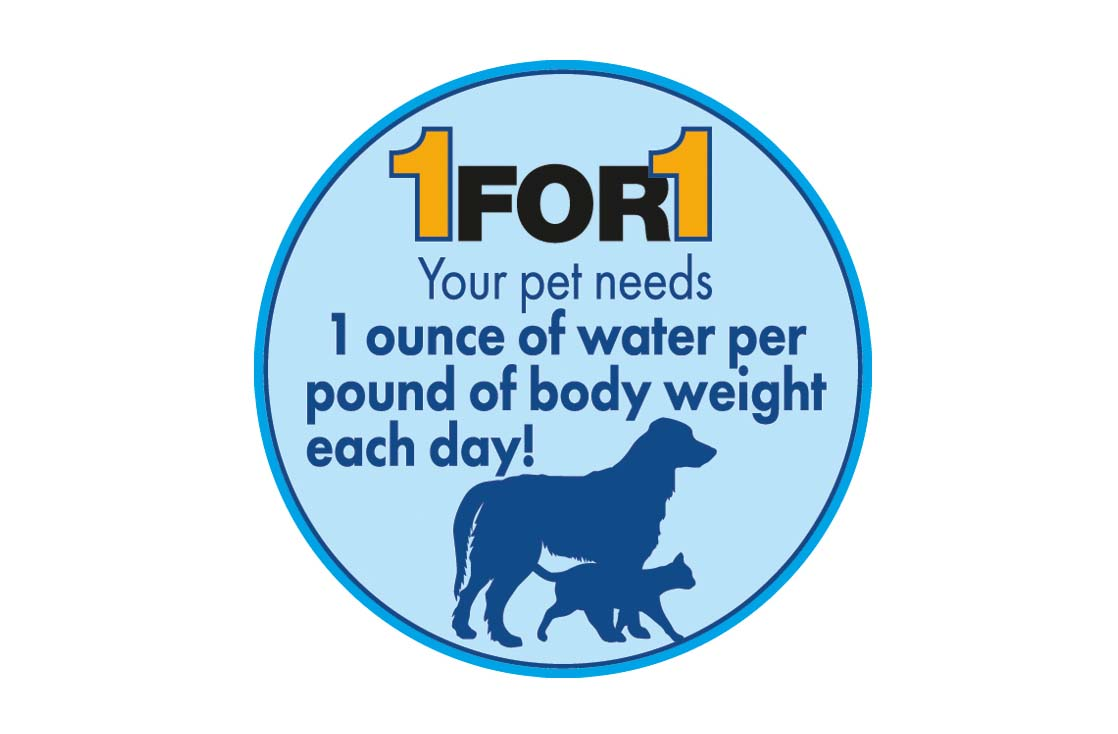 Did you know that your pet needs one ounce of water per pound of body weight per day?