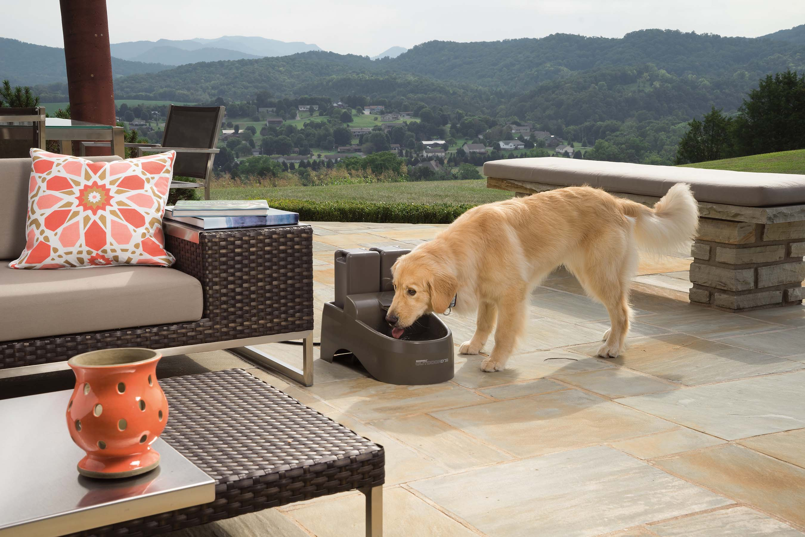 Pet fountains provide a clean supply of fresh, great-tasting water, giving dogs a reason to drink more to stay hydrated and healthy.