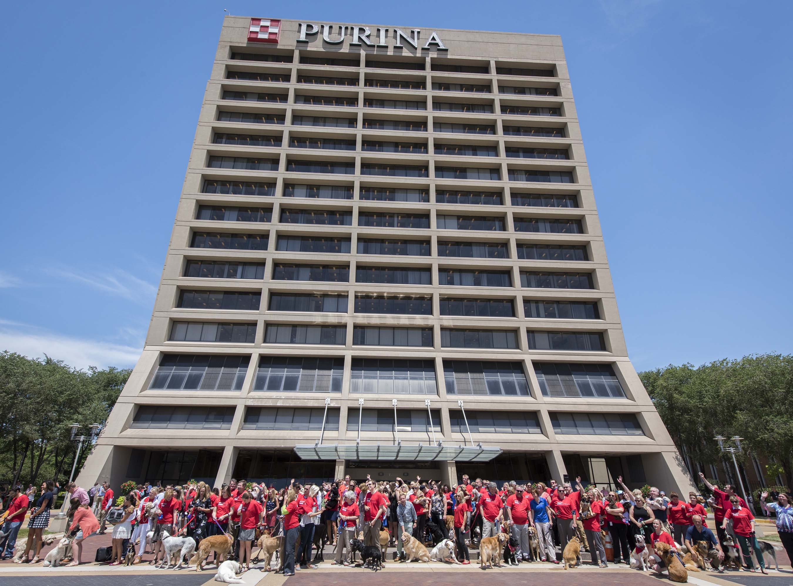 To celebrate #petsatwork Purina and partners attempted to break the world record for Most Pets in the Workplace in One Day. This was originally set by Purina in 2015 with 281 pets.