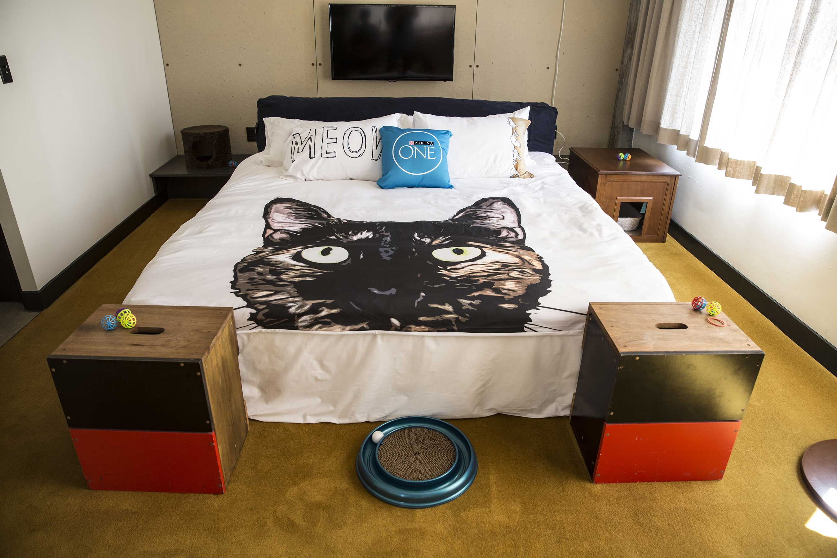Purina ONE's Whole Body Health Hotel, coinciding with CatConLA, will immerse guests in a hotel environment well-appointed with cat-themed amenities and cat health experts.