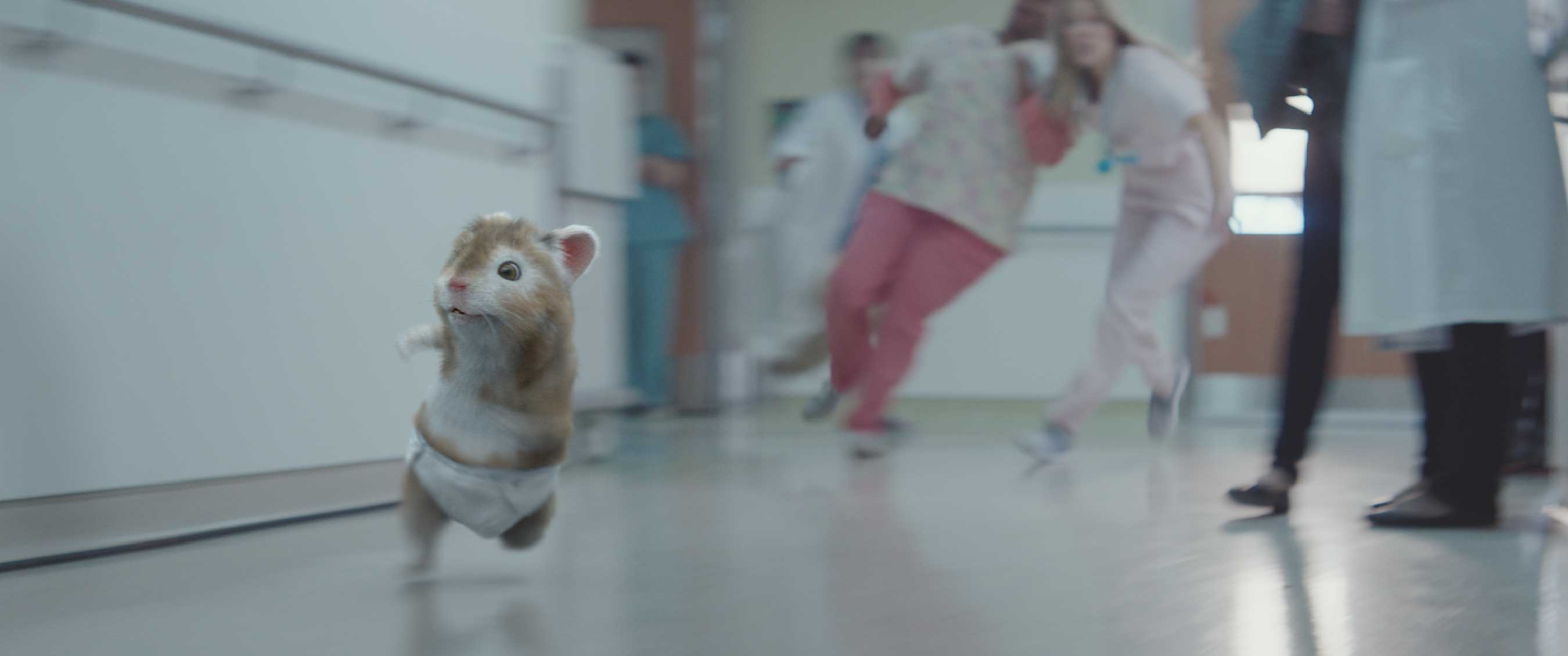 Kia Soul Hamster >> Kia Motors' Music-Loving Hamsters Welcome A New Member To The Family