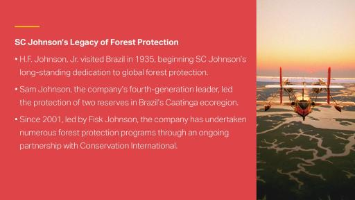 SC Johnson has been committed to forest protection for generations.