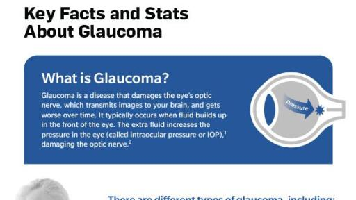 Glaucoma Fact Sheet
