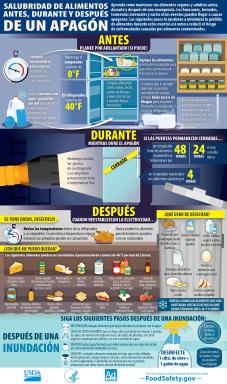 USDA Infographic - Food Safety Before, During And After A Power Outage - Spanish