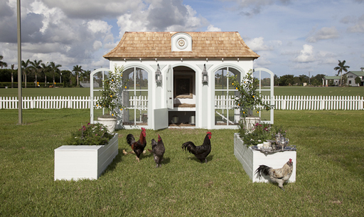 HERITAGE HEN MINI FARM