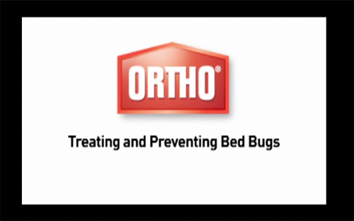 Treat and Prevent Bed Bugs