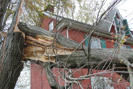 Hurricane  - Allstate responds to Sandy, Langhorne (damage)