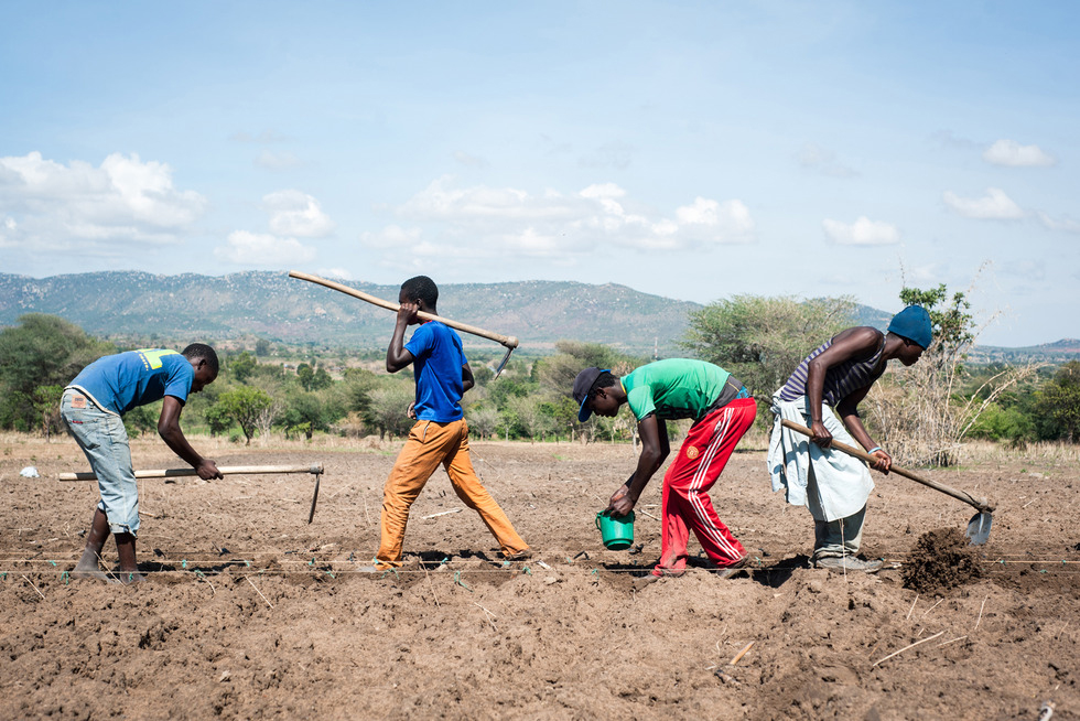 Young farmers in Tanzania plant maize along strings, a technique learned from trainings with OneAcre Fund. Photo by Hailey Tucker. 2015 CGAP Photo Contest