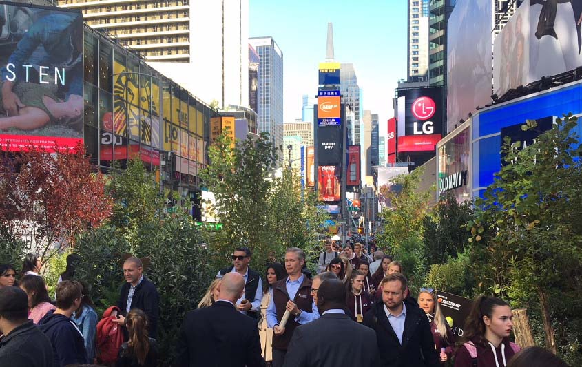 New Yorkers enjoy walk through the forest