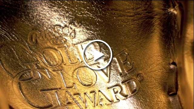 Rawlings Platinum Glove Award close-up
