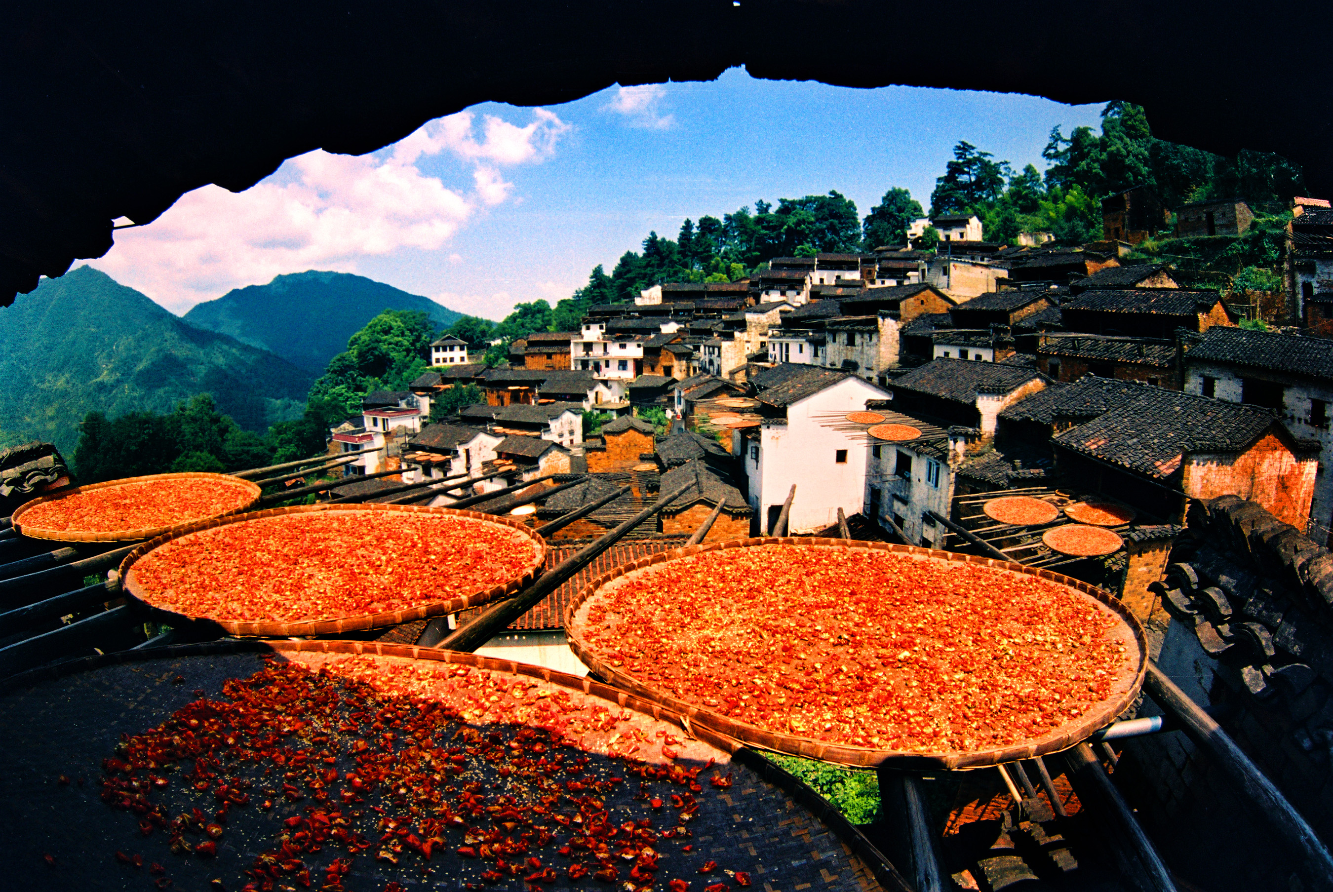 The unique view of shaiqiu can only be found in Huangling village where baskets of colorful harvest bask in the sunshine. (2)