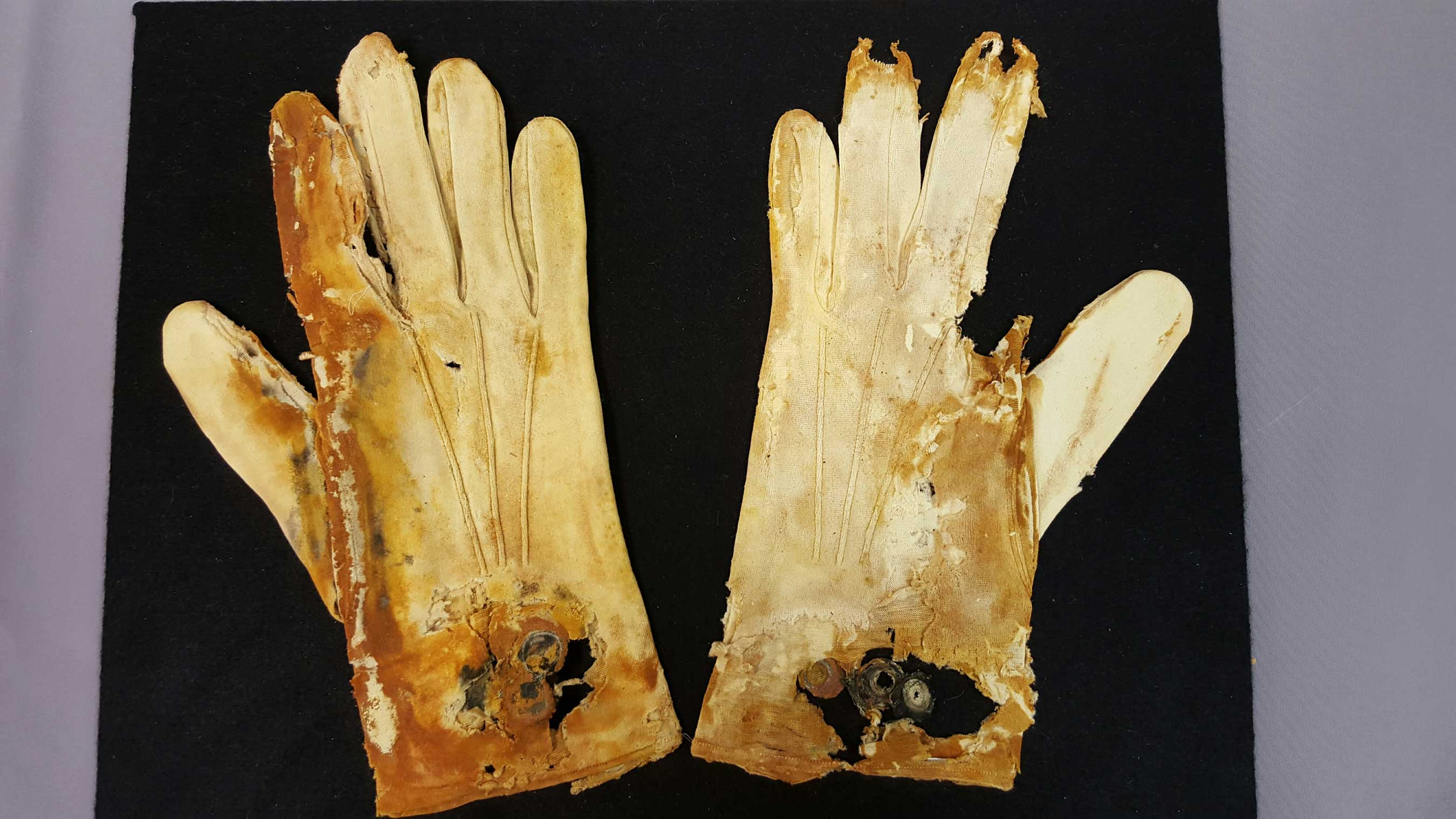 This degraded pair of cotton gloves was originally white and probably belonged to a gentleman. They are still attached at the cuff, so they had not yet been worn. (Credit Premier Exhibitions)