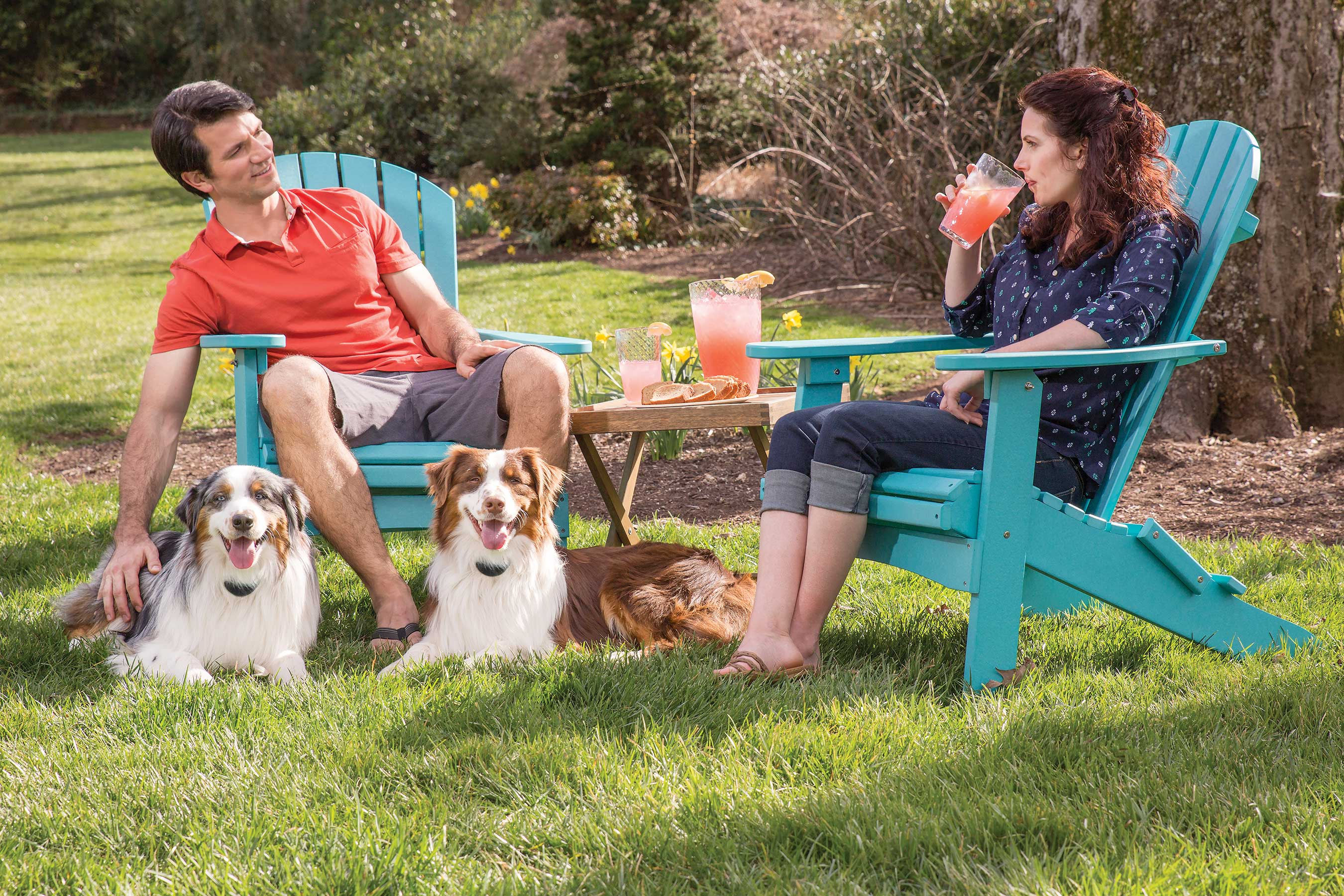 The PetSafe® Free to Roam Wireless Fence™ makes it easy and fun for pets and their parents to enjoy fresh air and exercise.