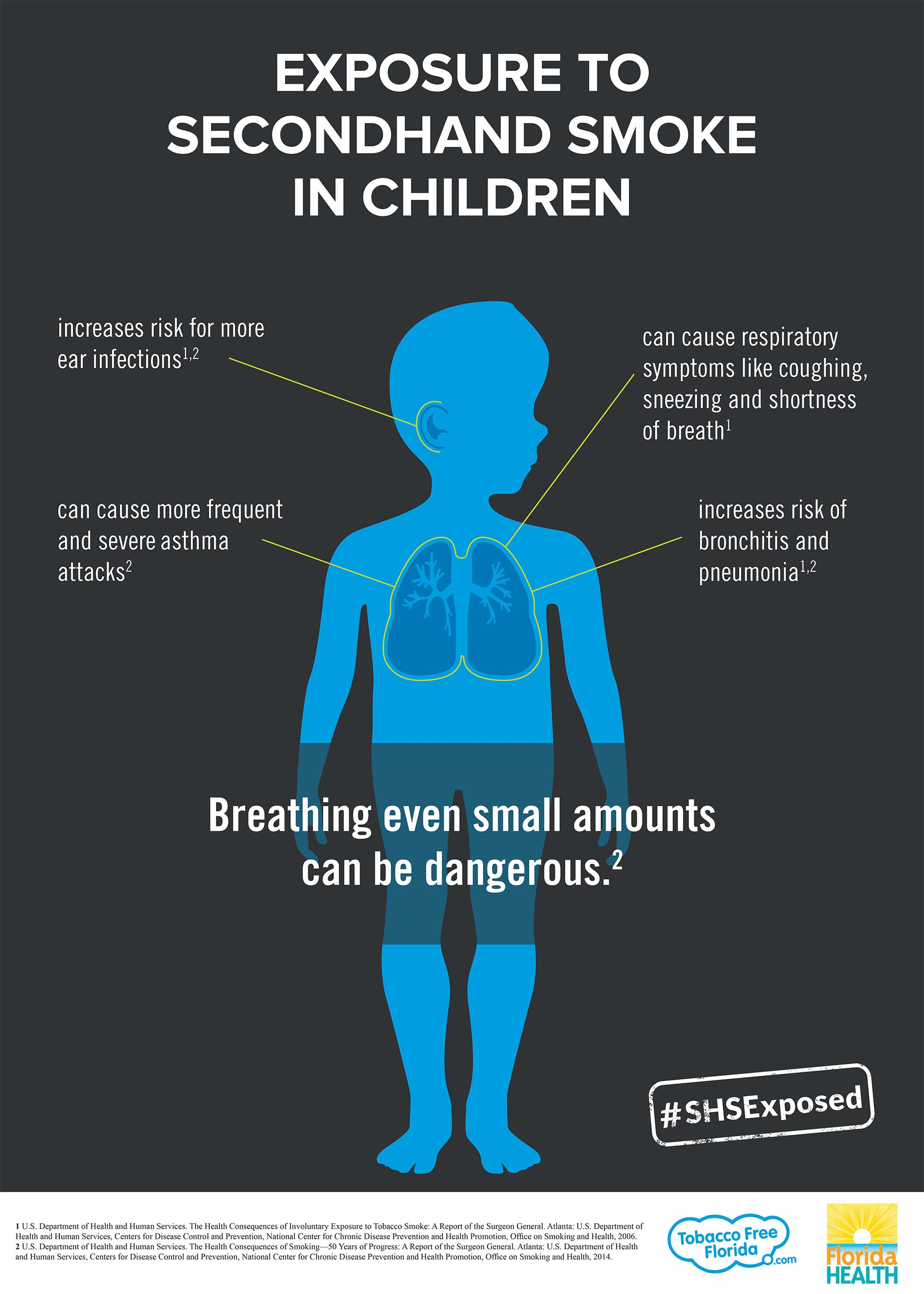 The Effects Of Prenatal Tobacco Exposure On